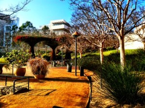 Getty Grounds