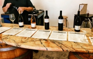 Urbano Cellars offers a Wide Range of Wines to Taste