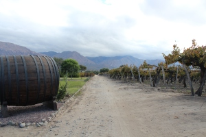 Bodega El Esteco in Salta, Argentina